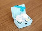 【寶可夢 野餐籃盒玩】寶可夢 野餐 餐籃 冰六尾 盒玩 公仔 Re-Ment 日本正版 該該貝比日本精品