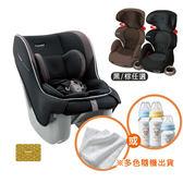 【雙汽坐組】康貝 Combi Coccoro II EG 輕穩汽車安全座椅/汽座(莓果黑)+(送 奶瓶組or浴包巾)+尊爵卡