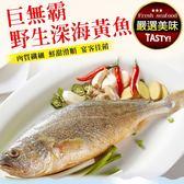【海肉管家】巨無霸野生深海黃魚X1尾(600-700g±10%/尾)