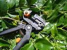 園藝工具 3類型刀片配置果蔬嫁接器