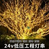 24v低壓燈串小彩燈閃燈串燈滿天星星燈戶外防水亮化樹燈裝飾布置 名購新品