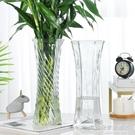 玻璃花瓶透明水養富貴竹百合花瓶擺件客廳插花干花北歐家用特大號NMS【名購新品】