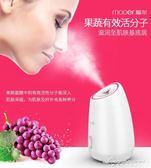 蒸臉器熱噴美容儀家用補水儀噴霧器臉部潔面儀 黛尼時尚精品