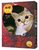 《肚臍是隻貓》首刷限定特仕版:內含喵星人收藏書盒+2017年CD盒桌曆+聖誕貓PVC夾..