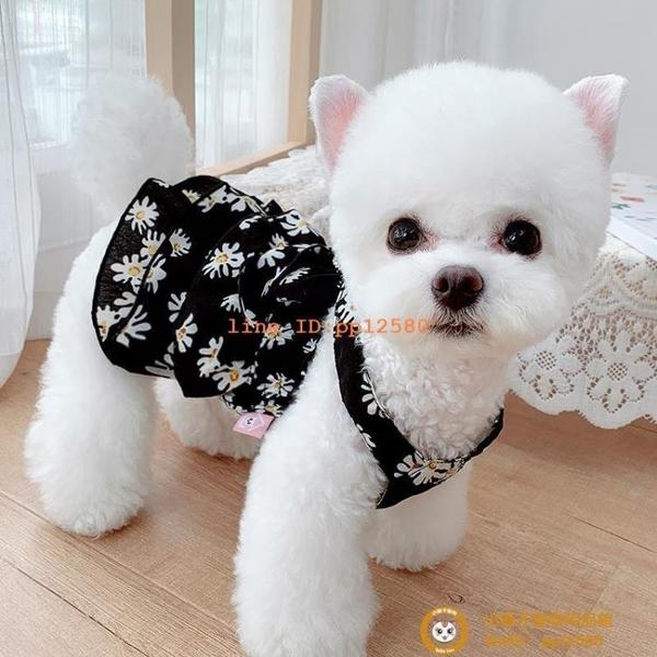 雛菊鑲鉆裙夏季薄款泰迪寵物幼犬狗狗貓咪泰迪博美比熊衣服小型犬小狗狗【小獅子】