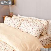 (預購)床包兩用被組 / 雙人加大【田園童話】含兩件枕套  100%精梳棉  冬夏兩用鋪棉被套組AAS315