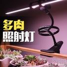 多肉補光植物生長燈led全光譜家用上色防...