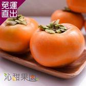 沁甜果園SSN 高山甜柿8A禮盒(6粒裝) E00900005【免運直出】