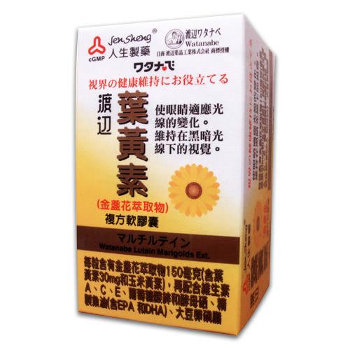 人生製藥 渡邊葉黃素複方軟膠囊 60粒/瓶 公司貨中文標 PG美妝