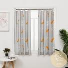 窗簾遮光北歐簡約現代臥室網紅款小飄窗短簾...