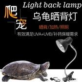 烏龜曬背全光譜太陽燈烏龜曬背燈爬蟲加熱軟管燈架可調節保溫加熱燈多肉燈 獨家流行館