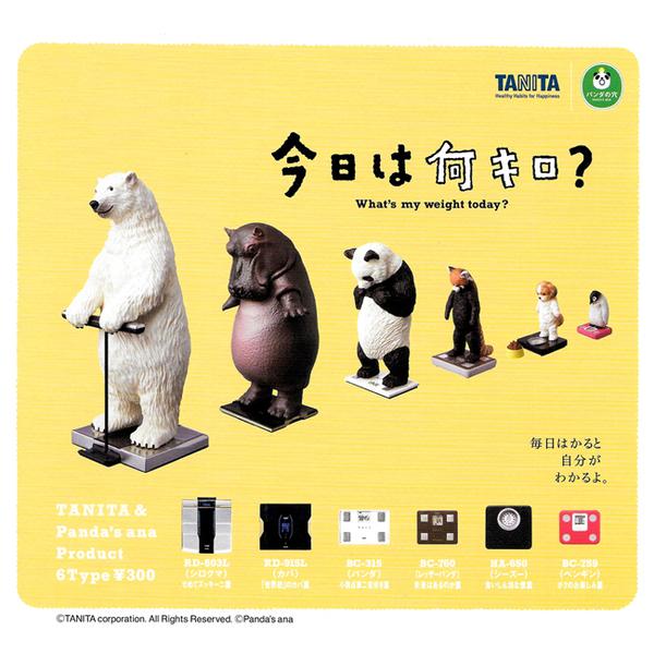 全套6款【日本正版】站上TANITA體重計的動物們 扭蛋 轉蛋 體重計動物 熊貓之穴 - 889080