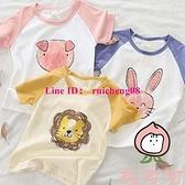 兒童純棉短袖T恤男女孩半袖寶寶打底衫上衣韓版【桃可可服飾】