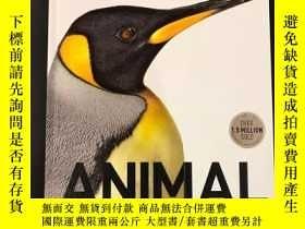 二手書博民逛書店罕見DK動物百科 圖鑒指南Animal: The Definitive Visual GuideY262452