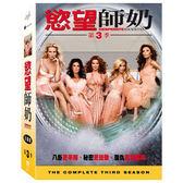 慾望師奶 第3季 DVD Desperate Housewives 免運 (購潮8)