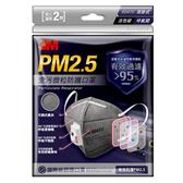3M 空污微粒防護口罩/活性碳帶閥型(2片包)#9041
