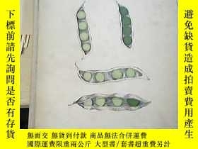 二手書博民逛書店GENETICS罕見A SURVEY OF THE PRINCI