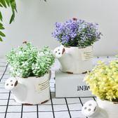 仿真植物盆栽小擺件清新創意家居室內客廳綠植裝飾品小盆景擺設夢想巴士