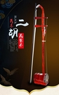 二胡 紅花梨木機械軸二胡樂器入門學習二胡樂器配件送指法貼 果果生活館