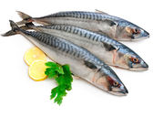 F0【魚大俠】FH151正挪威鯖魚(600g/尾)原料未處理過
