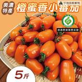 橙蜜香小蕃茄 美濃特產 5斤裝  ( 高雄型農履歷出品  限量鮮貨現出 )