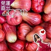 鮮果日誌 蓮霧界的LV 黑糖芭比4斤禮盒【免運直出】