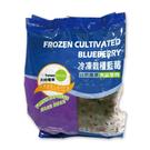 冷凍栽種藍莓-天時