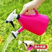 灑水壺噴壺小型陽臺盆栽澆花器園藝工具家用噴霧壺澆花灑噴水器 NMS創意新品