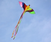 風箏成人大型2風箏