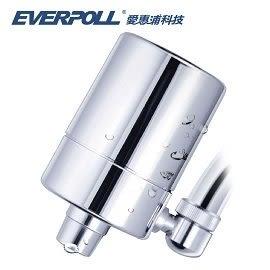 EVERPOLL愛惠浦科技 微分子潔膚活水器 (MK-802) 提升美肌力與抗病力,FG超人氣部落客推薦