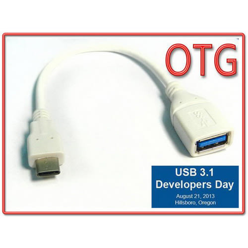 i-wiz USB 3.1 A母 Type-C OTG連接線
