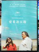 挖寶二手片-P03-570-正版DVD-電影【愛重逢以後】-傑哈德巴狄厄 伊莎貝雨蓓