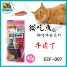 *~寵物FUN城市~*台灣製造《貓吃魚 ...