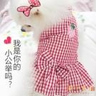 寵物夏季衣服背心狗狗衣服貓咪小型犬幼犬可愛裙子寵物【倪醬小鋪】