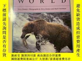 二手書博民逛書店Bears罕見of the worldY200344 Terry Domico Facts on file