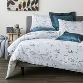 HOLA 香庭純棉床包兩用被組 雙人