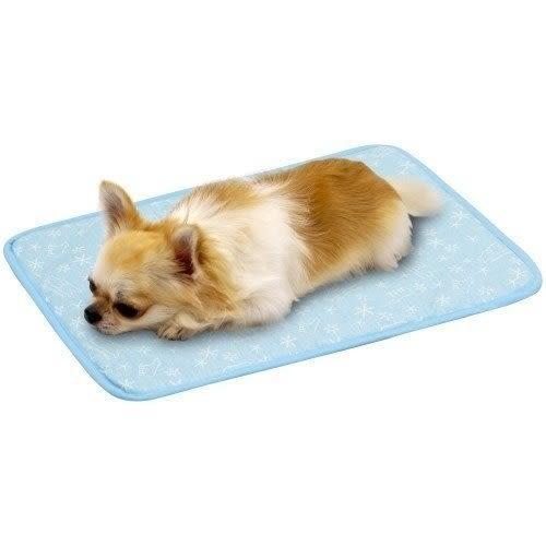 *WANG*Marukan《可愛熊熊圖案涼感墊-L號》兩色可選 寵物涼墊 犬貓適用