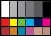 [2美國直購] DGK Color Tools DKK 5吋x 7吋 Set of 2 White Balance and Color Calibration