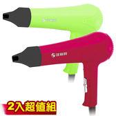★達新★專業型粉彩吹風機(2入組) TS-2099