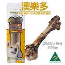 PetLand寵物樂園《澳洲澳樂多》100%天然風乾袋鼠大腿骨 單根 / 狗零食
