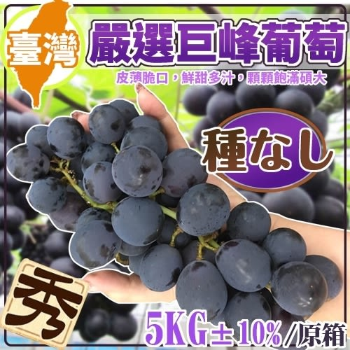 【果之蔬-全省免運】信義區/牛奶葡萄【原箱5kg/8台斤/約7-8串】