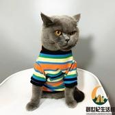 貓咪衣服寵物英短小幼貓秋裝暹羅條紋多色毛衣彩色狗狗衣服【創世紀生活館】