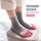 五子襪5雙秋冬新JSC健盛品牌女中筒襪子棉襪可愛分腳趾五指襪純舒適保暖伊芙莎