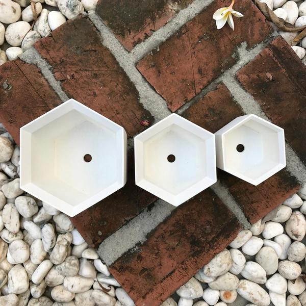 (BEAGLE) 六角型創意水泥花盆(小) 多肉水泥花器/仙人掌水泥花盆/水泥植栽/水泥盆器:8*8CM