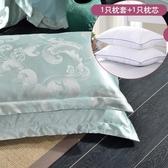 枕芯加枕套套裝學生宿舍用枕頭 床上用品成人單人枕一對拍2 西城故事