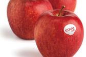 【優果園】紐西蘭Envy愛妃蘋果★35入/箱 / 9.5kg★約270g/顆