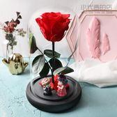永生花小王子玫瑰真花帶燈玻璃罩禮盒擺件情人節生日DIY禮物干花【奇貨居】