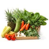 鋐洲有機農場『溫適蔬活』蔬菜水果箱 • 配送1次 (嚴選有機蔬果 / 低溫免運宅配)