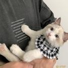 韓版IG寵物口水巾貓貓狗狗可愛圍脖套脖子裝飾三角巾小型圍嘴【小狮子】