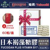 【美陸生技AWBIO】日本褐藻糖膠(素食可)【60粒/盒(禮盒)】